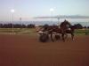 Derby del Trotto 2008