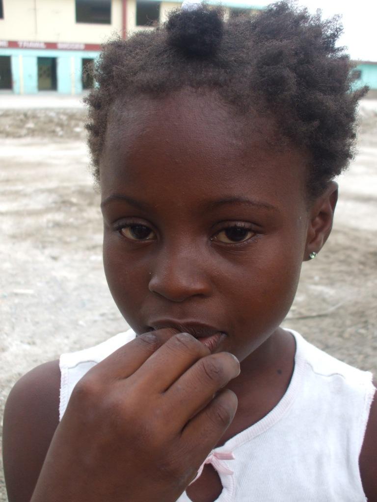 Haiti - White Crane