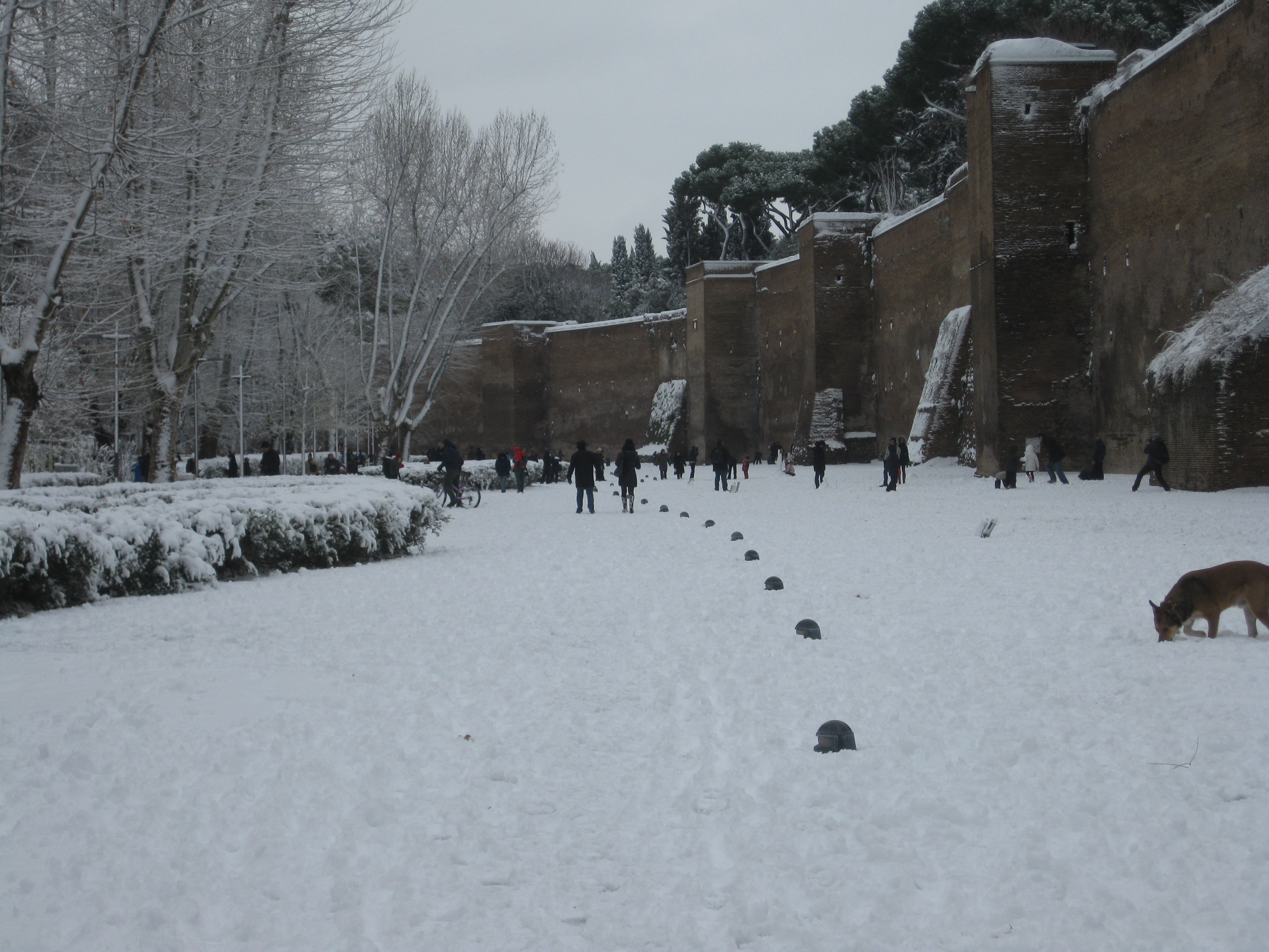 La neve a Porta Metronia